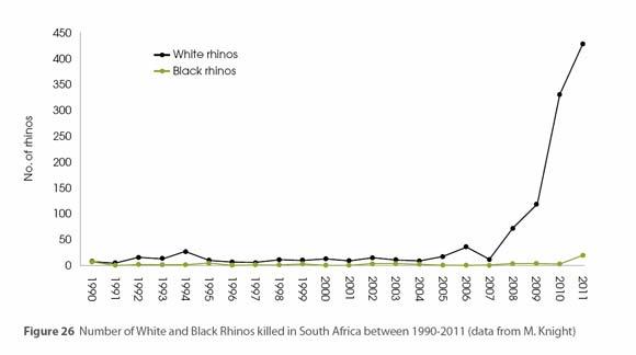 The Economic Probability of Rhino Extinction | Rolling Alpha